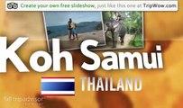 """Koh Samui"" Ravntina's photos around Koh Samui, Thailand (koh samui parrot show)"