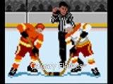 NHL '94 mod/hack: The Real NHL '94
