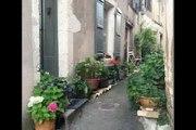 QUERCY   Près de Bourg De Visa  Jolie maison au village