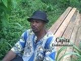 Cameroon: ESSENCES FORESTIERES ET EXPLOITATION DU BOIS (Forest and Wood Exploitation)