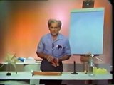 Lesson 1 - The Idea of the Center of Gravity - Demonstrations in Physics