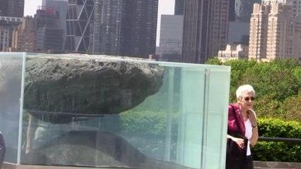 La azotea del museo Metropolitano de Nueva York acoge una propuesta creativa de Pierre Huyghe