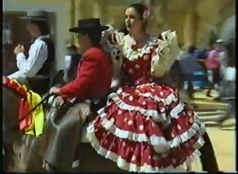 Spanish Analusian Rodeo