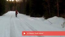 Un homme fait fuir un ours en lui criant dessus : dingue!