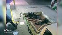 Australie : les tribulations d'un voleur sans talent