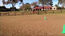 Sarah and Finn Parelli Freestyle Audition PASSED LEVEL 3++ .wmv
