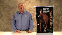 Horse Supplements | Horse Nutrition | Equine Supplements | Horse Feed | Equine Feed