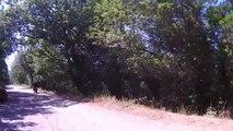 Ballade Moto en Corse Col de la Scalella - Tolla