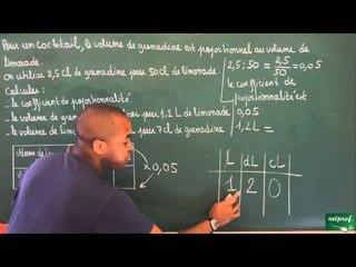 389 / Proportionnalité / Situation de proportionnalité (3)