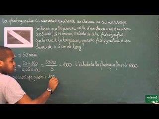 403 / Proportionnalité / Déterminer une échelle (4)