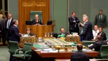 Christopher Pyne being a tool in parliament