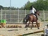 Fanny la mono des poney