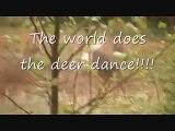 The Harlem Shake! (Shaytards Style) - The Harlem Shake! (Wild Family Country Style)