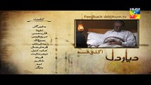 Diyar E Dil Episode 11 Promo HUM TV Drama 19 May 2015 - Video Dailymotion