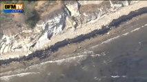 Une marée noire menace des baleines au large de Santa Barbara