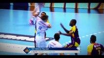 Trophées LNH du handball - Les défenseurs nommés