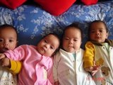 Bebês gêmeos,trigêmeos,quadrigêmeos,música pra ver se cola