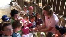 Visite de la ferme pédagogique / Lycée agricole