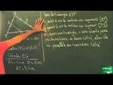 055 / Triangle et parallèles / Utilisation des théorèmes du cours (7)
