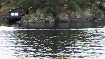 Possible last remnant of tsunami sighting, Pender Harbour, BC Canada