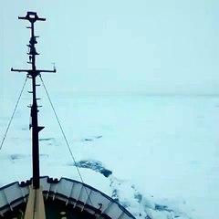 russian ship stuck in ice in antarctica