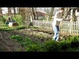 La vitesse d'utilisation d'une grelinette pour aérer la terre du potager