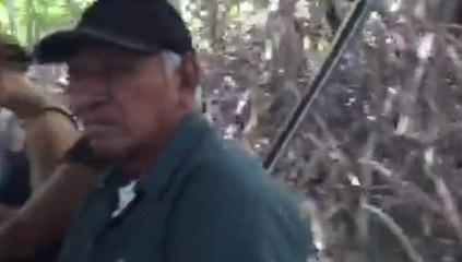 Une balade dans les mangroves au Costa Rica