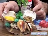 How to Care for Land Hermit Crabs   Tips on Maintaining a Healthy Diet for Pet Hermit Crabs