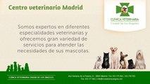 Ciudad de los Ángeles - Centro veterinario Madrid - Clínica veterinaria Alcorcón