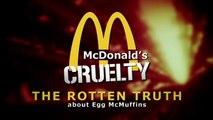 EGGS Animal Abuse Easter Hunt Truth Egg McMuffins Chicken (McDonalds KFC Fast Food) NSA leak
