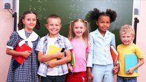 Vlaams onderwijs volgens N-VA-Kamerlid Siegfried Bracke (stand van het land - 10/12)