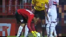 Goalkeeper Rogerio Ceni Amazing Free Kick Goal! São Paulo vs Red Bull 3-0 2015
