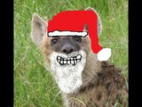 The Laughing Hyenas Christmas Special!
