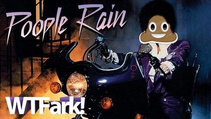 "POOPLE RAIN: Outdoor ""Sweet Sixteen"" Birthday Party Ruined By Airplane Raining Poop"