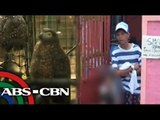 Man arrested for selling eagles