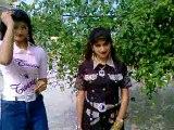 sraki song -walaaway sanwal  best sraki song--[Masha Allah mobile Taunsa 03336466861