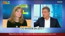 Ou investir en 2013? Marc Fiorentino & Pascale Baussant  - BFM Business - c'est votre argent