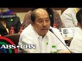 Abad gets grilled defending DAP in Senate hearing