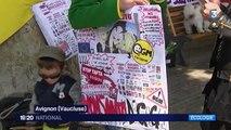 Pesticides et OGM : des manifestations partout dans le monde