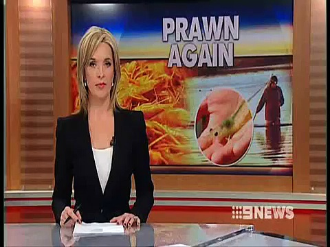 World first for prawn stock project