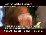 Delphin Vacuum Introduction