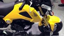 Honda GROM 125 (MSX 125) / Motorcycle Show 2013