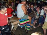 Poor mexican donkey and stupid drunk tourists