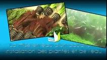 Vidéo La mise en eau d'un aquarium installation des plantes et de l'eau Web TV Animaux TRUFFAUT