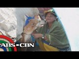 Hero dog saves family from fire in Palawan