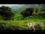 نازنین مریم (جان مریم) Nazanine Maryam