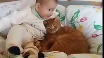 Kid Cuddling With Cat