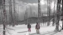 Session de ski freestyle dans une ancienne forêt brûlée
