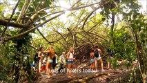 howzitboy hikes: Manoa falls, Aihualama falls and Luaalaea falls