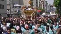 鳥越神社 本社神輿渡御 - 破睦